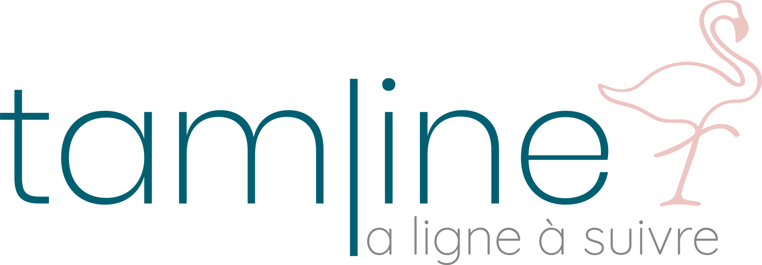 Logo de l'agence de communication tamline